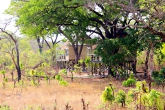 Simbabwe, Hwange Nationalpark, Elephants Eye