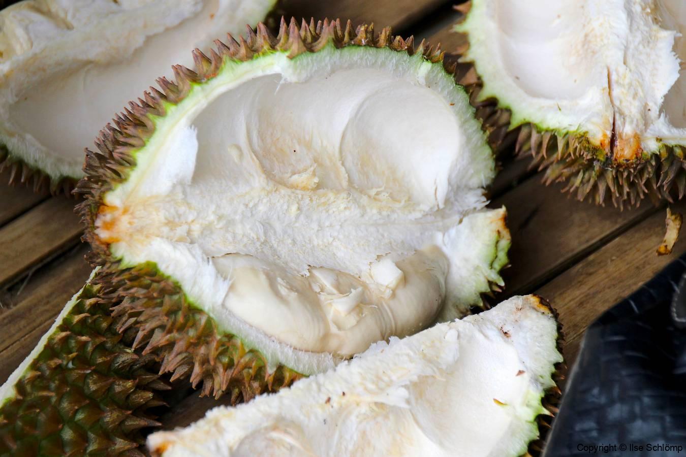 Sumatra, Umgebung Bukittinggi, Durian