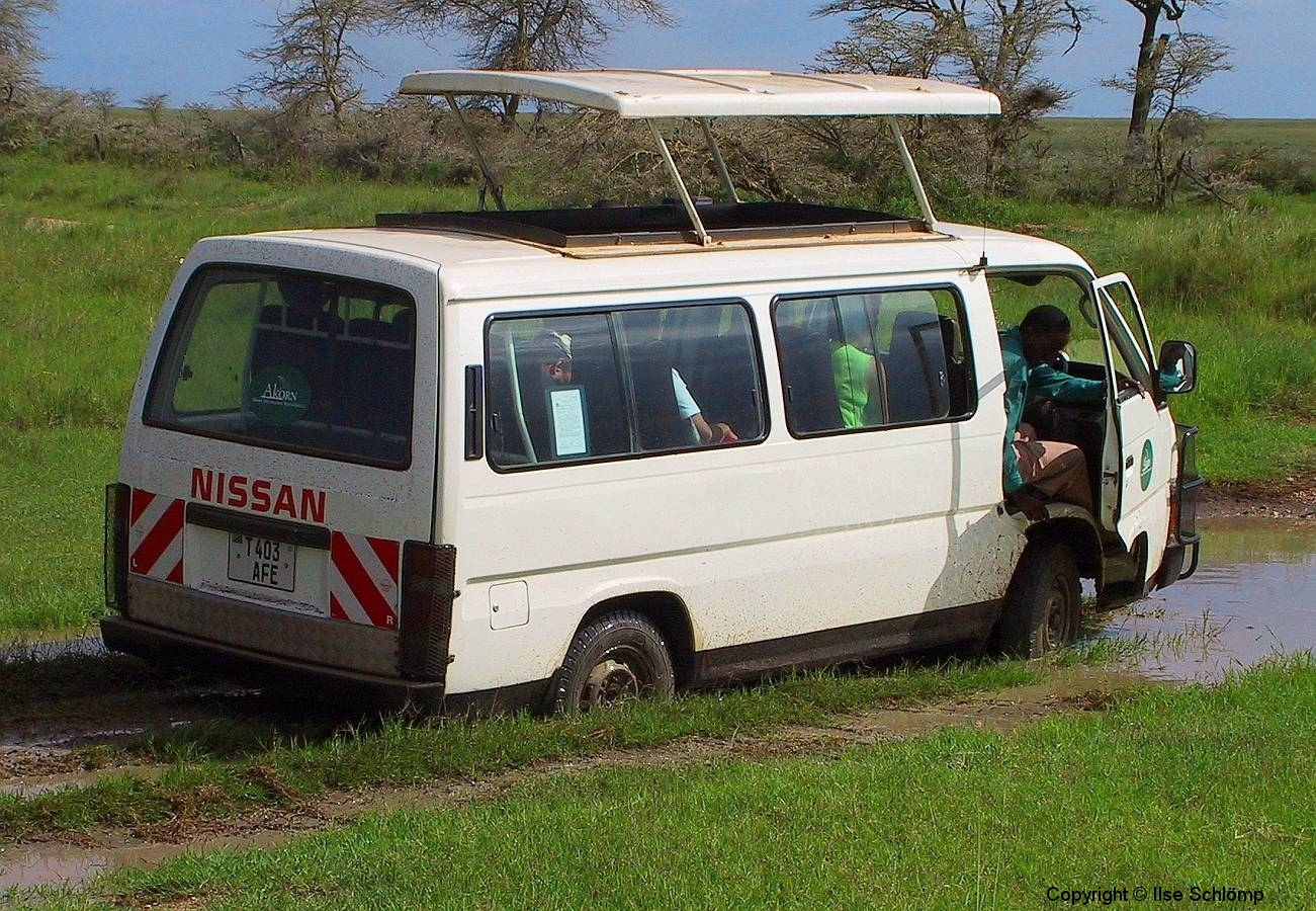 Tansania, Serengeti, Unsere zweite Panne, Wir stecken fest