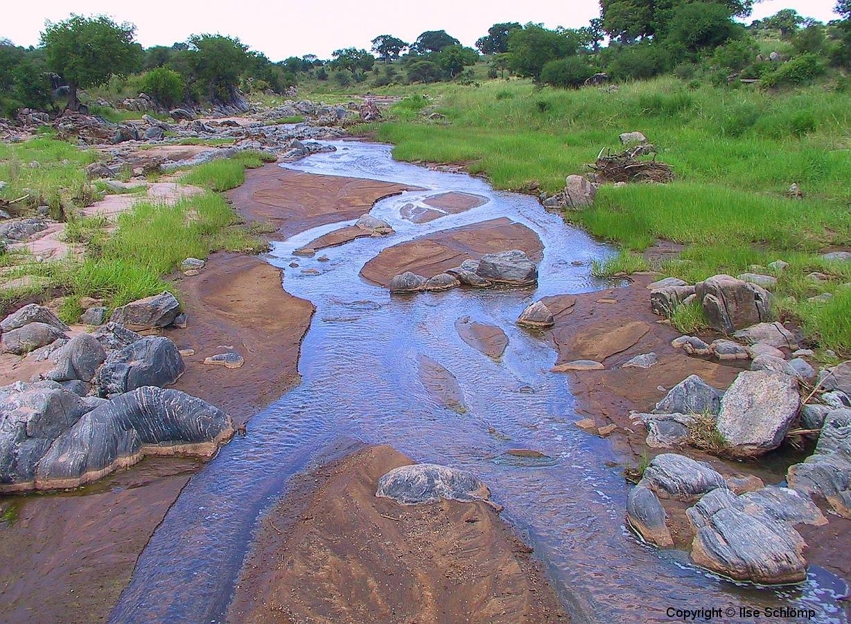 Tansania, Tarangire Nationalpark