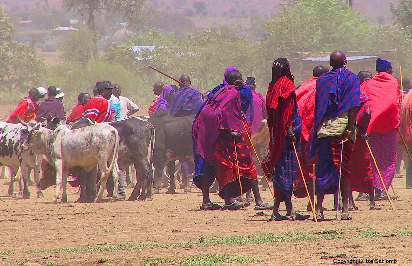 Tansania, Viehmarkt