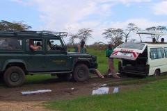 Tansania, Serengeti, Hilfe naht