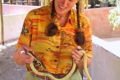 Tansania, Afrikanische Braune Hausschlange