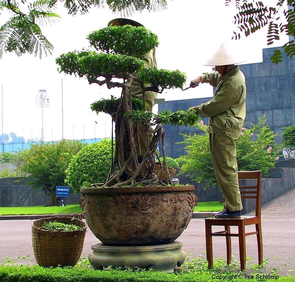 Hanoi, Gärtner bei der Arbeit